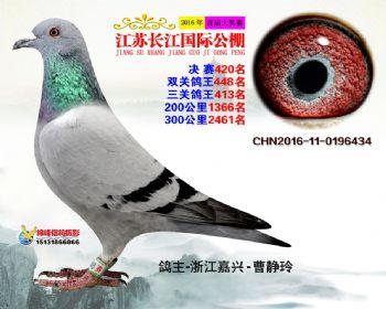 江苏长江决赛420名