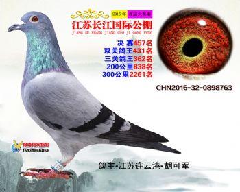 江苏长江决赛457名