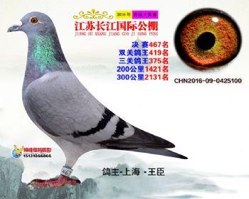 江苏长江决赛467名