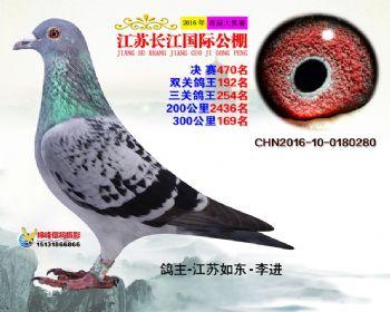 江苏长江决赛470名