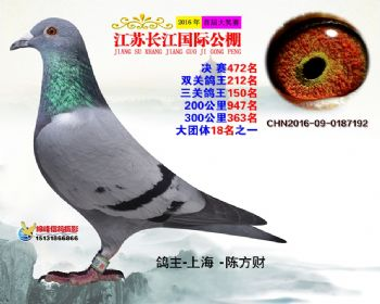 江苏长江决赛472名