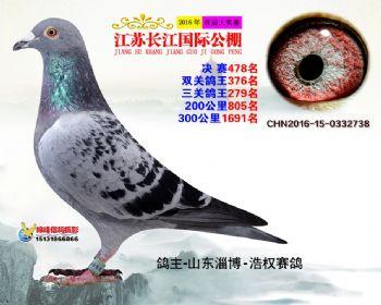 江苏长江决赛478名