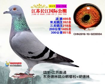 江苏长江决赛490名
