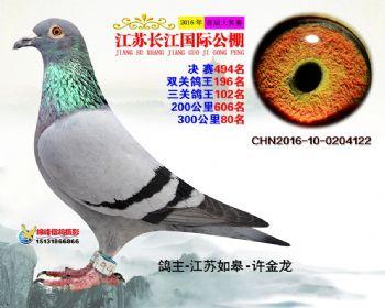 江苏长江决赛494名