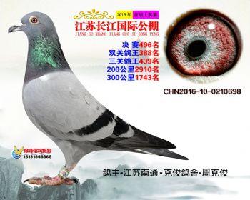 江苏长江决赛496名