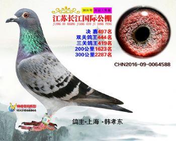 江苏长江决赛497名