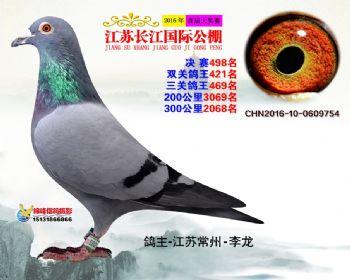 江苏长江决赛498名