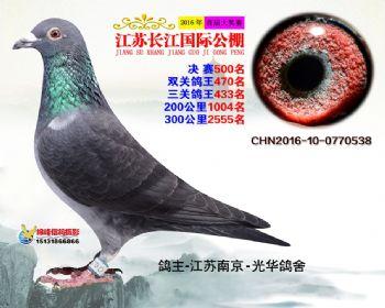 江苏长江决赛500名