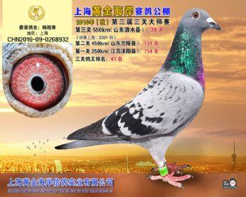 上海黄金海岸决赛第39名