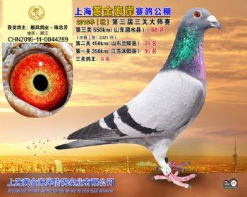 上海黄金海岸决赛第68名