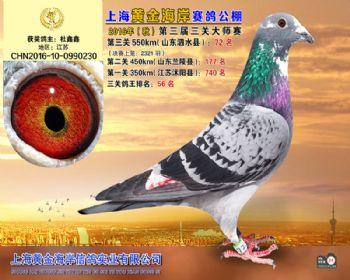 上海黄金海岸决赛第72名