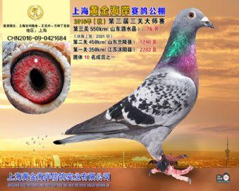 上海黄金海岸决赛第76名