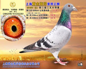 上海黄金海岸决赛第77名