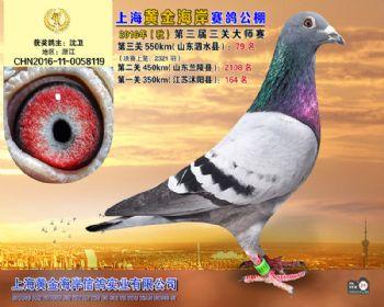 上海黄金海岸决赛第79名