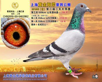 上海黄金海岸决赛第89名