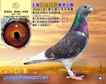 上海黄金海岸决赛第92名