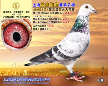 上海黄金海岸决赛第94名