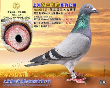 上海黄金海岸决赛第98名