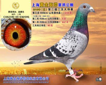 上海黄金海岸决赛第230名