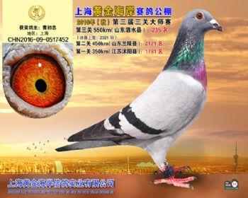 上海黄金海岸决赛第235名