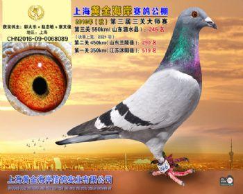 上海黄金海岸决赛第246名