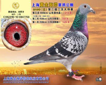 上海黄金海岸决赛第273名