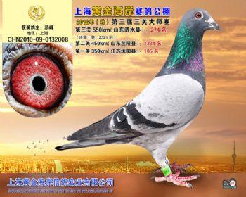 上海黄金海岸决赛第274名
