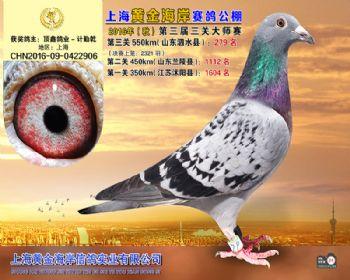 上海黄金海岸决赛第279名