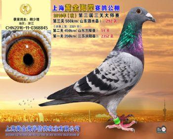 上海黄金海岸决赛第292名