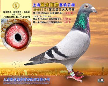 上海黄金海岸决赛第298名