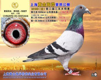 上海黄金海岸决赛第302名