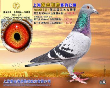 上海黄金海岸决赛第358名