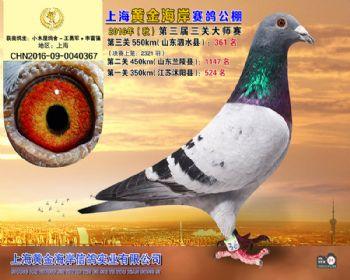 上海黄金海岸决赛第361名