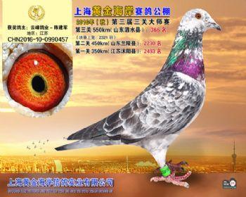 上海黄金海岸决赛第366名