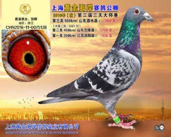 上海黄金海岸决赛第389名