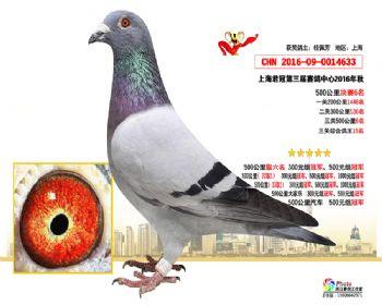 上海君冠决赛6名