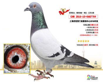 上海君冠决赛101名