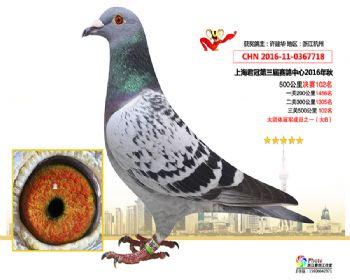 上海君冠决赛102名