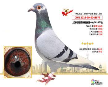 上海君冠决赛105名