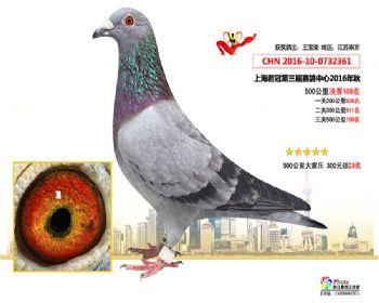 上海君冠决赛108名