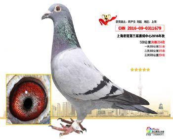 上海君冠决赛204名