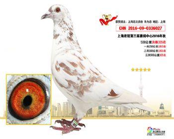 上海君冠决赛305名