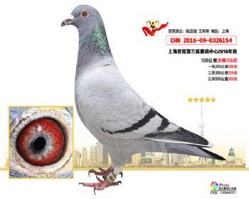 上海君冠决赛306名