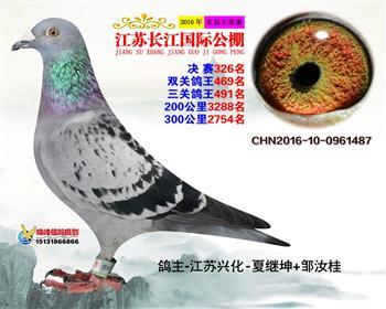 江苏长江决赛326名