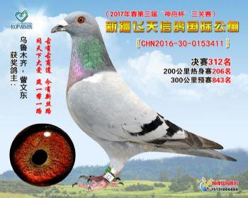 新疆飞天决赛312名