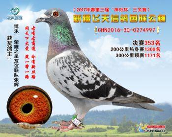 新疆飞天决赛353名