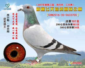 新疆飞天决赛107名