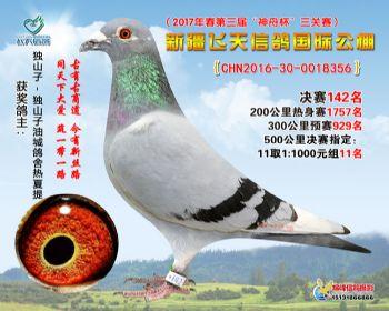 新疆飞天决赛142名
