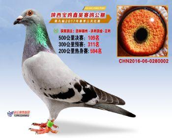 陕西宝鸡鑫昊公棚三关决赛109名