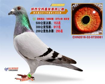 陕西宝鸡鑫昊公棚三关决赛153名